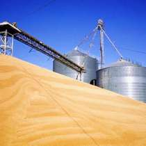 Экспорт зерна пшеницы, в г.Костанай