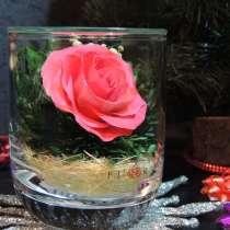 Розовые розы в вакууме в интерьере, в Москве
