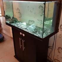Аквариум 125 литров, в Мытищи