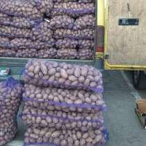 Cartofii se află la chișinău, в г.Кишинёв