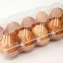 Упаковка для яиц 10 шт., в г.Днепропетровск