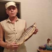 Майкл, 49 лет, хочет познакомиться – Майкл, 49 лет, хочет познакомиться, в г.Ашкелон
