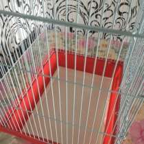 Клетка для попугая, в Нижнем Тагиле