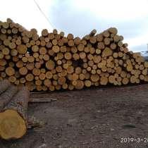 Круглый лес сосна зеленка, в г.Усть-Каменогорск