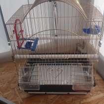 Клетка для попугая, в г.Луганск