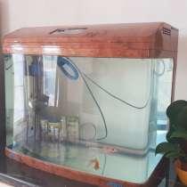 Продается аквариум с рыбками, в г.Атырау
