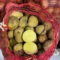 Картофель свежий из Переяславки. Находится в Хабаровске, в Хабаровске
