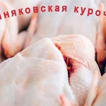 Охлажденное мясо домашней курицы, в Городце