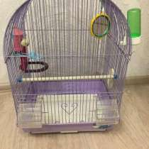 Клетка для птиц, в Кемерове