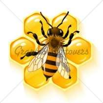 Продам мёд.медоносных пчёл.Пчёлопакеты, в Кемерове
