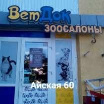 """Ветеринарная клиника """"ВетДок"""", в Уфе"""