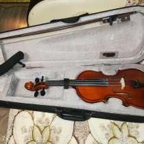 Скрипка, в Ставрополе