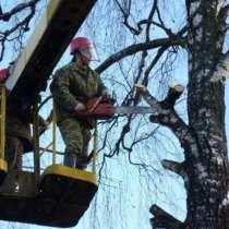 Cпил деревьев и брезка ветокпил расчистка ЛЭП, в Майкопе