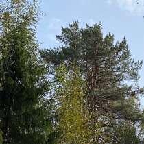 Лесной участок 12 соток в 50 км по Новорижскому шоссе, в Истре