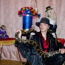 Шоу с дрессированными животными Карнавал, в Москве