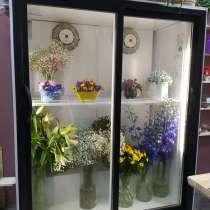 Холодильник, в Санкт-Петербурге
