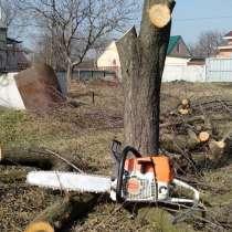 Спилить дерево, в Москве