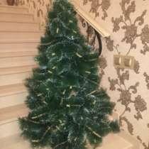 Новая елка, в Ярославле