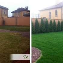 Озеленение, посев газона, посадка деревьев, кустарников и др, в г.Астана