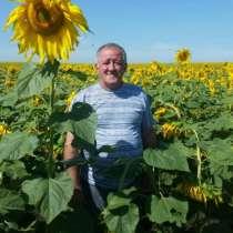 Петр, 63 года, хочет пообщаться, в Бийске