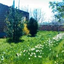 Одноэтажный каменный дом с садом в пригороде, в г.Ереван