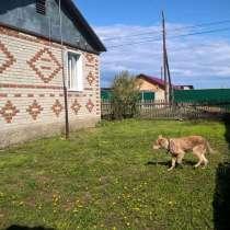 Дом 78 м² на участке 17.7 сот, в Екатеринбурге
