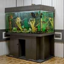 Продам аквариум, в Новосибирске