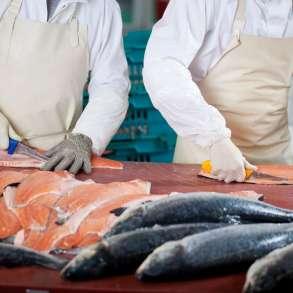 Разнорабочий на рыбное производство, в Санкт-Петербурге
