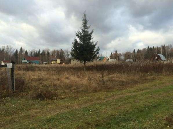 """Продается земельный участок в СНТ """"Химик"""", (рядом дер.Ямская), 106 км от МКАД по Минскому шоссе."""
