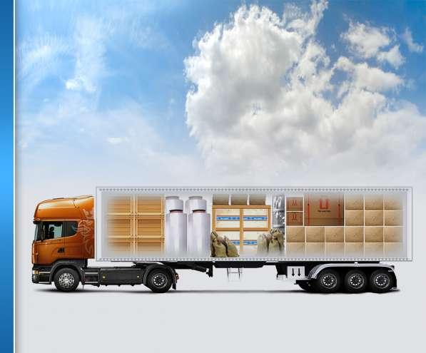BALTECH Express Logistics - Прямі закупівлі обладнання в фото 4