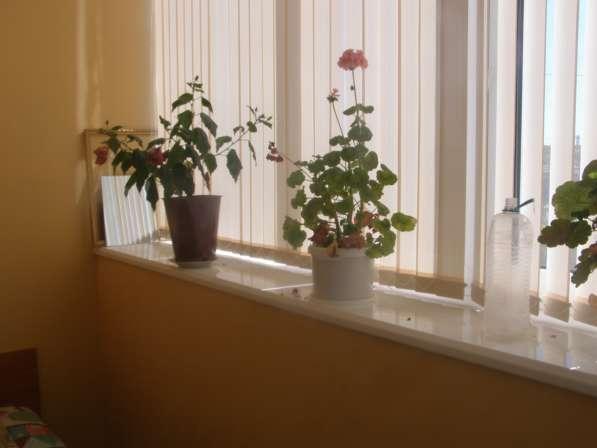 Сдам однокомнатную квартиру в районе казачьей бухты в Севаст