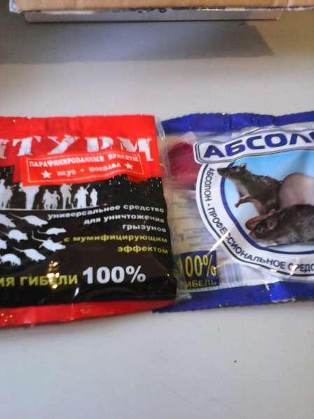 Уничтожение клопов, тараканов, мышей, крыс. Продажа средств в Санкт-Петербурге