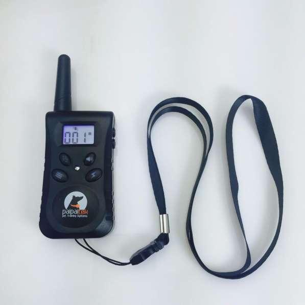 Приёмник PD520 для электронных ошейников моделей серии 998