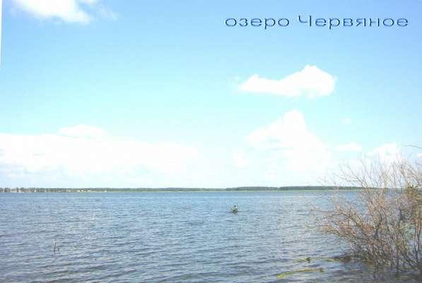 Большой участок на берегу озера Червяное