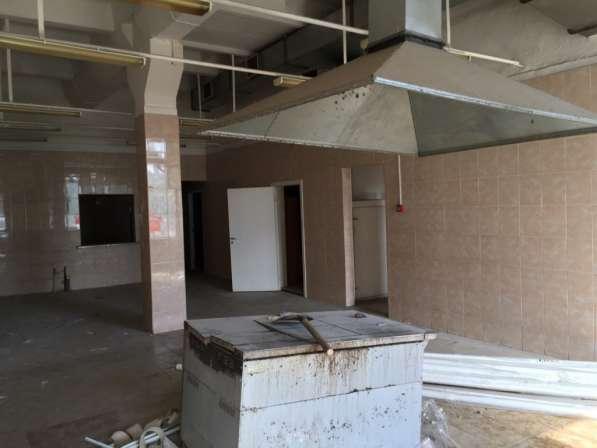 Сдам пищевое производство, склад, 415 кв. м, м. Бухарестская