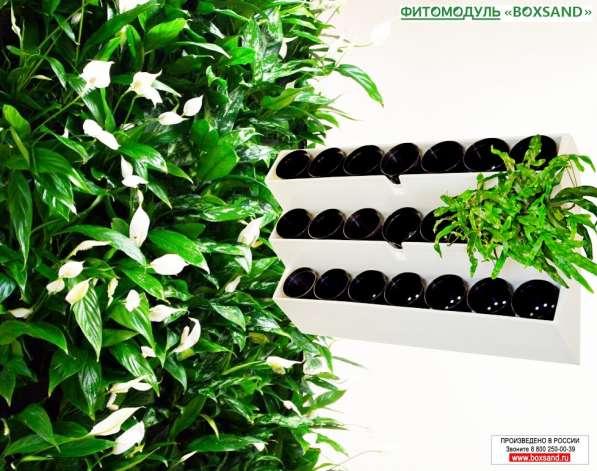 """Фитомодуль 104х67 см для вертикального озеленения """"BOXSAND 2"""