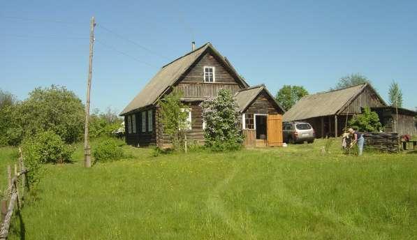 Продам усадьбу - 70м2 дом и 50 соток земли д. Панево