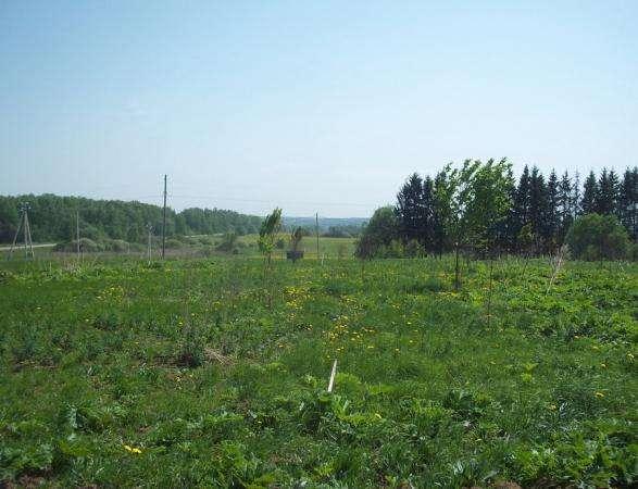 Продается земельный участок 18 соток в п. Сокольниково,Можайский р-н, 123 км от МКАД по Минскому шоссе..