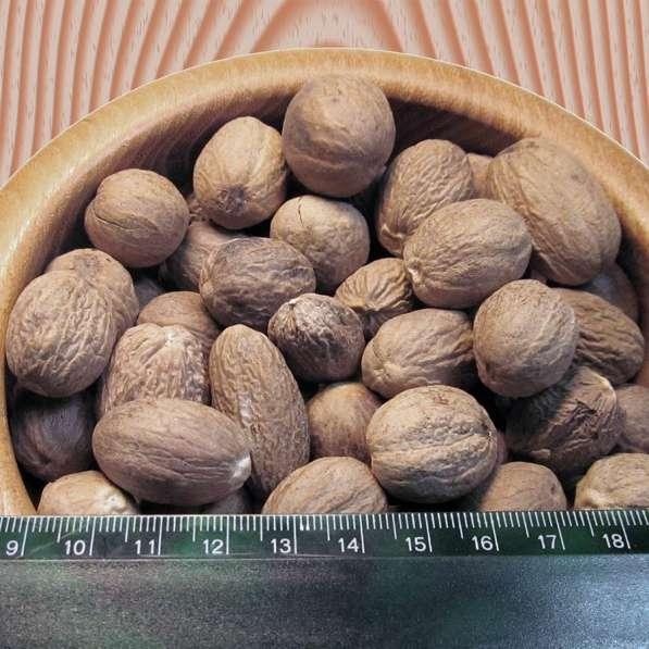 Мускатный орех(целый)