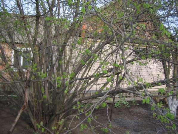 Продам дом 110м2,кирпичный в Новошахтинске фото 4