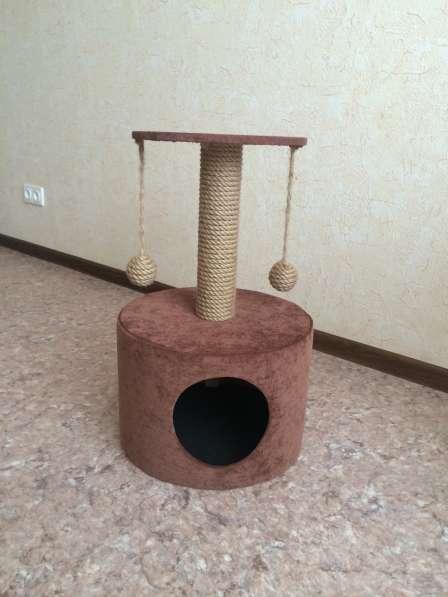 Домик для кошки, когтеточка