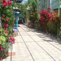 Гостевой Дом в Береговом, в Феодосии
