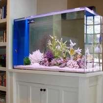 Очистка и ремонт аквариумов, в Москве