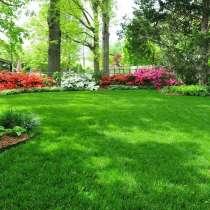 Газоны Мы предлагаем Вам качественный посев газонной травы, в г.Ташкент