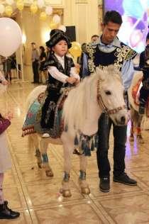 Белая пони маленькая лошадка, в г.Алматы