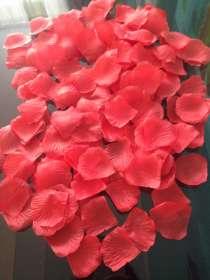 Лепестки роз, в Брянске