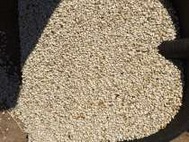Продам сафлор 600 тонн, в Саратове
