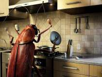 Уничтожение насекомых, в г.Самара