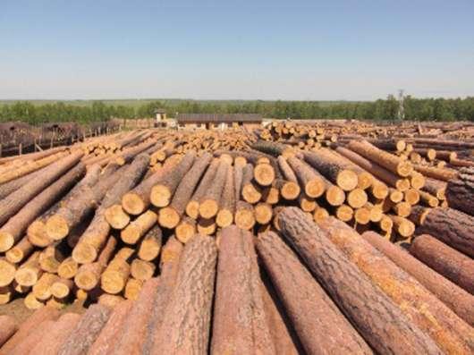 Продаем лес круглый хвойных пород по взаимовыгодной цене.
