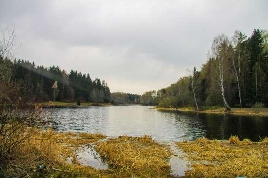 Усадьба у Пестовского водохранилища от собственника в г. Пушкино Фото 1